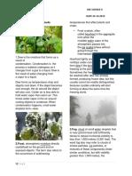 Dew,Fog, Frost Cloud-meteorology