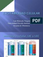 excitabilidad celular
