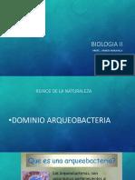 Dominio Arqueobacteria