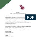 PRACTICA N2 Combustion interna.docx
