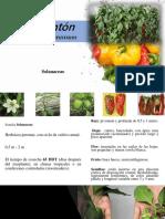 Fertilizacion de Pimenton