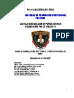 Asignatura Doctrina de La Pnp 2019-Silabo Desarrollado