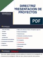 Directriz Proyectos