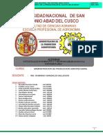 RSU-IF INFORME FINAL2018.docx