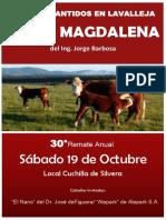 Catálogo Santa Magdalena