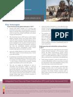 Summary of world food program report on food crises