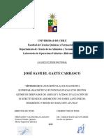 José Gaete Avance de Tesis 2