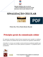 Sinalizacao Celular