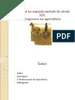 A Agricultura Tradicional