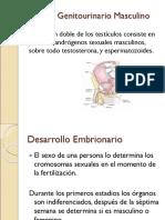 Cap 44 y 45 Sistema Genito Urinario