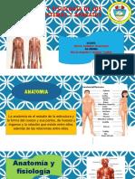 Anatomía y Fisiología de Los Sistemas y Aparatos