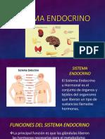 Sistema Endocrino y Respiratoritorio