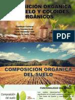 Composición Orgánica Del Suelo y Coloides Orgánicos