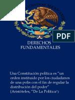 1.-DERECHOS-FUNDAMENTALES (1)