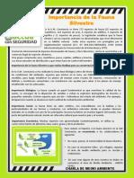 171019 Reporte diario SSOMA.pdf