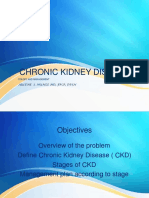 Chronic Kidney Disease Stages