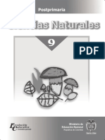 GUIA NATURALES 2 PERIODO GRADO 9.pdf