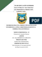 Infor. Pollos Pimpollo.mod II- PDF