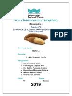 practica Nº 3 - Bioquimica I