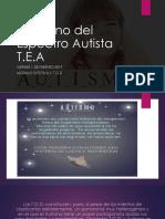 Tea y Discapa Cognitiva-Viernes 1 Feb