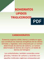 CARBOHIDRATOS LIPIDOS Y TRIGLICERIDOS.pdf