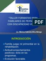 Taller Formativo Para Familiares de Personas Con Dv(Final1)