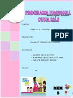 130796249 Programa Cuna Mas Original