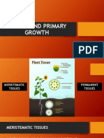 Tissues and Primary growth
