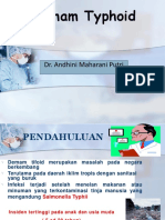 Ppt Typhoid Fever (Andhini)
