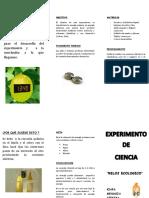 TRIPTICO_RELOJ_ECOLOGICO.docx