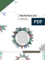 Mikrobio Fungi