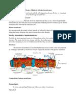 Assign,ent biochem.docx