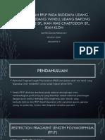 Penerapan RPLP