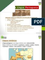 82101 Pp Historia Lingua Portuguesa