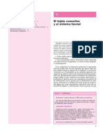 FASCIA 1.pdf