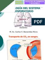 Fisiología Del S. Respiratorio 4