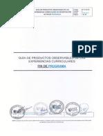 Guía de Po de Investigación Fin de Programa v01 (1)