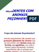 Apresenta__o_Animais_Pe_onhentos[1].ppt