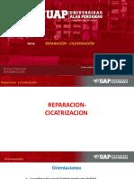 Patología General y Estomatologica. Semana 5