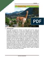 BOSQUE - GRANJA PORCÓN- CAJAMARCA- PERÚ.docx