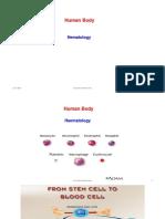 Leucocytosis