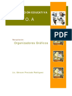 Organizadores Gráficos-Autor