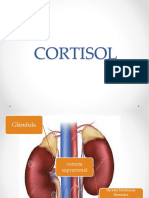 cortisol.ppt