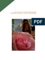 Sanación con Rosas