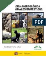 LIBRO valoracion morfologica SEZ_tcm30-119157.pdf