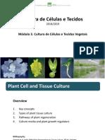 CCT Module 3 01.pdf