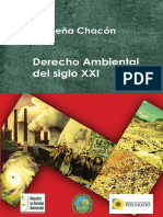 Derecho ambietnal del siglo XXI. Derecho Ambiental.pdf