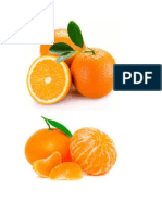 frutas animles otoño