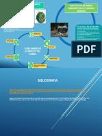 Infografia Contaminacion y Cambio Climatico