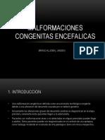 Malformaciones congenitas encefalicas